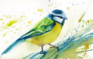 birdsumioutline-epaper2_0026