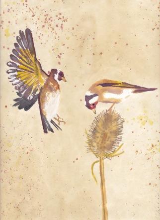 Goldfinchsumi-epaper5