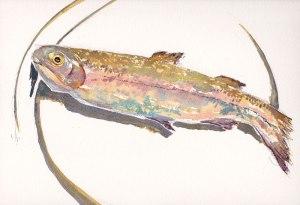 fishondish2catalogueweb